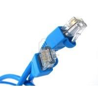 1' ft feet RJ45 modular network cable BLUE