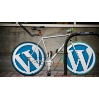 Wordpress web hosting (blog)